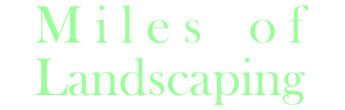 landscaper cairns website design