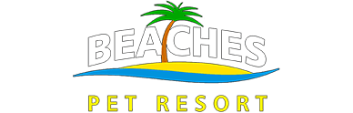 beaches pet boarding townsville